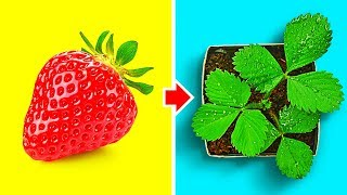 AWESOME GARDEN HACKS THAT ACTUALLY WORKS