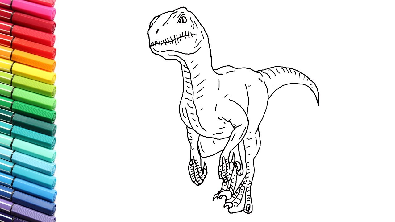 How to Draw Dinosaur Velociraptor - Drawing and Coloring ...