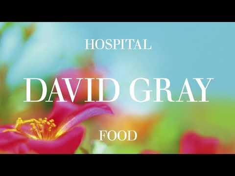 David Gray - Hospital Food - Radio Edit (Official Audio)