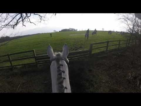 Cheshire Drag Hunt 13th Feb 2016 The Hatton Arms headcam GoPro Footage