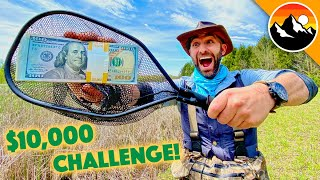 $10,000 Animal Challenge - WHO WILL WIN?!