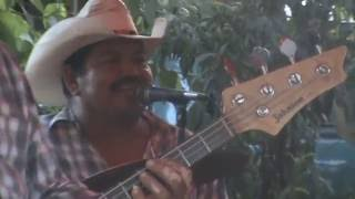 la burra orejona - Grupo Hnos Rodriguez , aldama tamaulipas