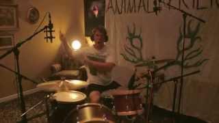 Animal Friend - Blue Dolphin (Studio Video)