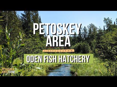 Oden State Fish Hatchery Tour