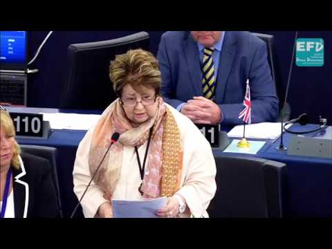 China exerting undue influence on Hong Kong's political, legal and social life - Margot Parker MEP