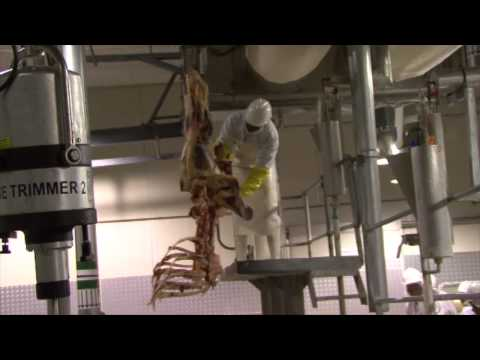 Vision 2016 Council tour of Botswana Meat Commission Abattoir in Maun, 16 April 2015