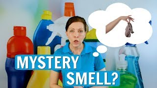 Gambar cover How to Get Rid of the Mystery Smell in Airbnb - VRBO