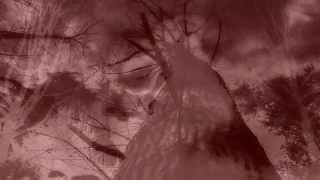 Helloween - Follow The Sign.avi