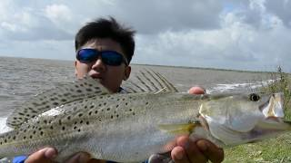 Fishing Before HURRICANE HARVEY- 20 Year Old Rod Challenge,How to Catch