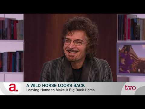 Gino Vannelli: A Wild Horse Looks Back
