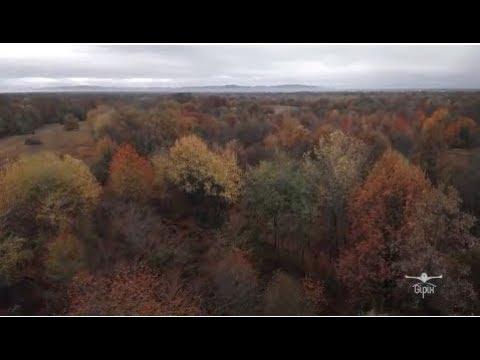 Un volo nel tempo tra autunno ed inverno | Gipix