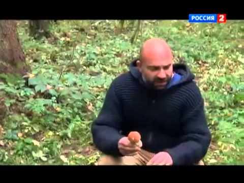 """Рейтинг Баженова """"Могло"""