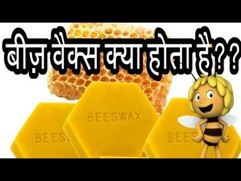 What is Beeswax??🐝🐝बीज़ वैक्स क्या होता है??