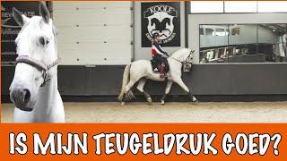 Belangrijke training met George en Eve + WIN ACTIE | PaardenpraatTV