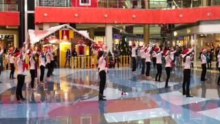 Inditex flash mob dance in Tbilisi Mall