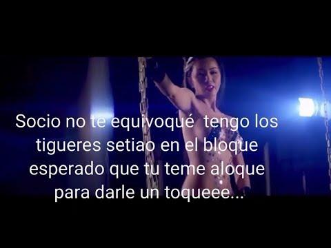 Lyrics + modelos de banda de camion remix Alfa,Noriel,farruko,Bryan Myer,Delagueto y Villano san