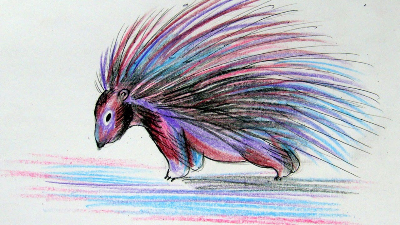 how to draw an interesting porcupine diy crafts tutorial guidecentral