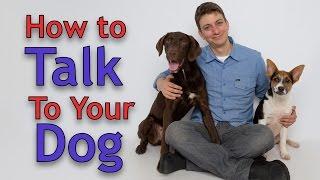 Dog Training: The ART of Communicating with Your Dog