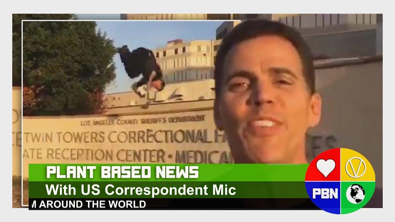 LATEST STEVEO UPDATES + MORE NEWS!
