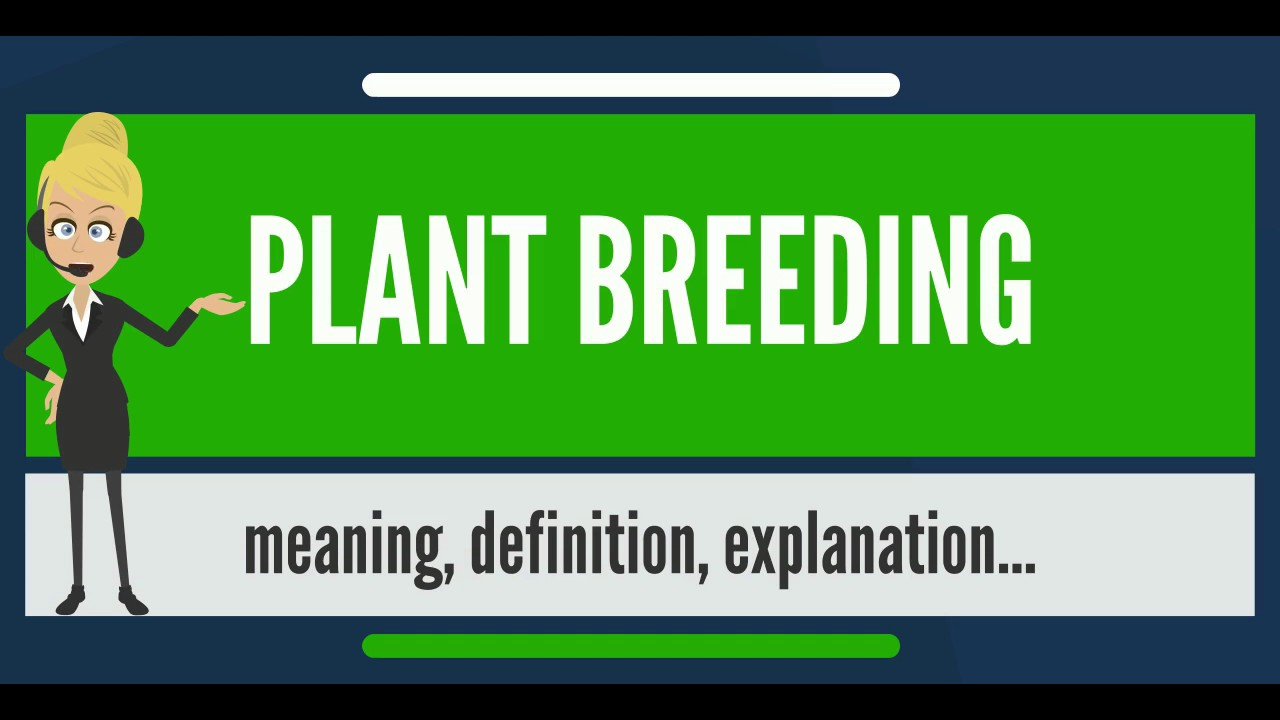 Breed is ... Meaning 27
