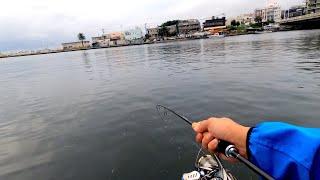 海でルアー釣りを初めるなら、この釣りがおすすめ!