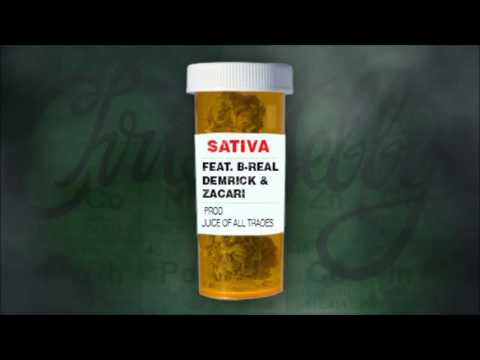 Chris Webby - Sativa (B-Real, Demrick & Zacari)