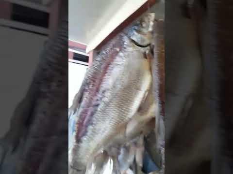 SAMARA FISH MARKET