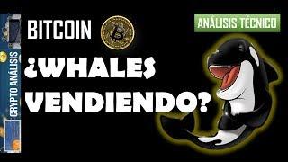 Bitcoin ¿WHALES VENDIENDO?   Btc/Criptomonedas TRADING ANÁLISIS/NOTICIAS