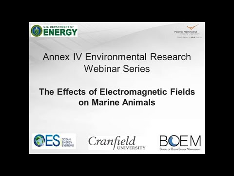 Annex IV Webinar #5: The Effects of Electromagnetic Fields on Marine Animals