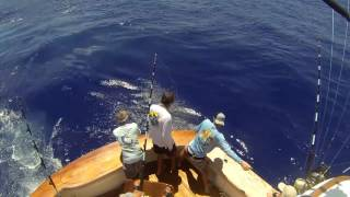 2017 Bermuda Big Game | Team Wolverine | Blue Marlin