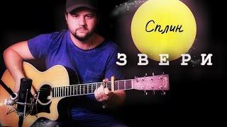 Звери - Фингерстайл с Гитарином / Сплин