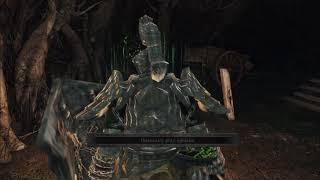 Zagrajmy w Dark Souls 2: Scholar of the First Sin (part 30)