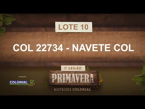 LOTE 10   COL 22734