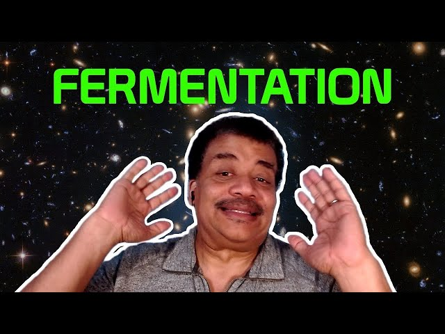 StarTalk Podcast: Cosmic Queries - Fermentation