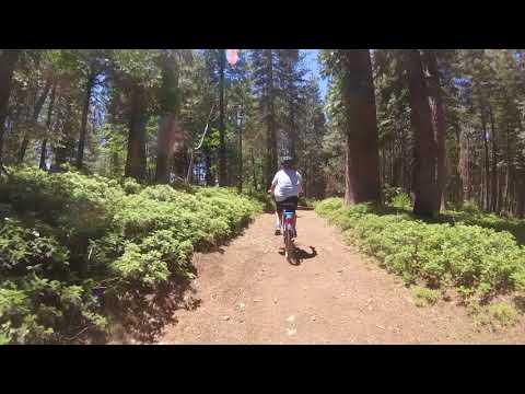 Mountain biking Arnold ca 201