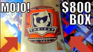 THE BIGGEST PULL OF MY LIFE! 16/17 The Cup Hockey Tin Break