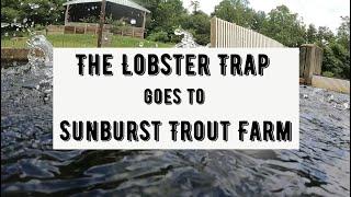 Sunburst Trout Farm Tour
