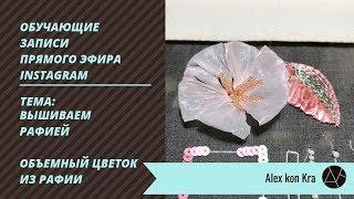 Работаем с рафией / Обучение вышивке люневильским крючком