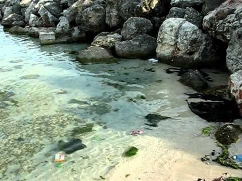 Aquasol Beach Review July 2011
