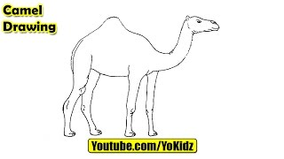 How to draw CAMEL for kids