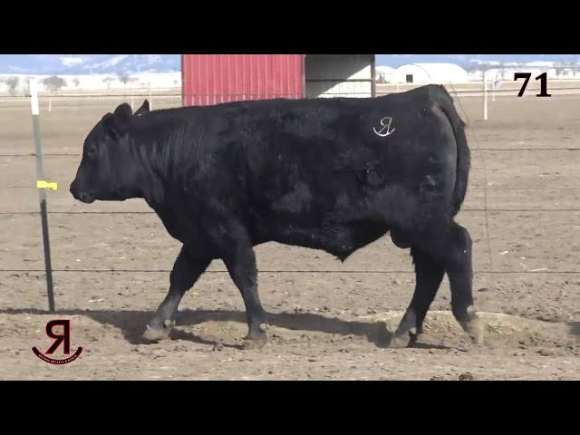 Reverse Rocking R Ranch Lot 71