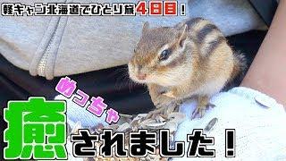 【軽キャン北海道ひとり旅4日目】手乗りリスに癒され、マイナス15度の世界に行く旅!