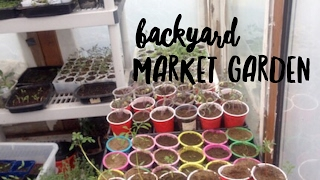 How to Start a Market Garden on a Budget -- with Homeplace Journal