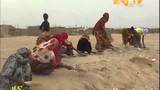 Eritrean News   Tio   Menzah Gemgam Bahri by EriTV