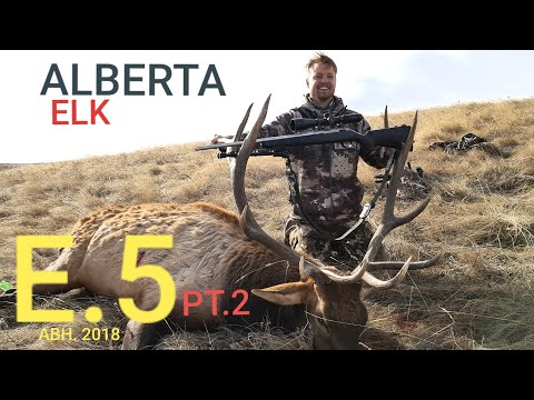 SOUTHERN ALBERTA ELK HUNT ABH HUNTING PART.2