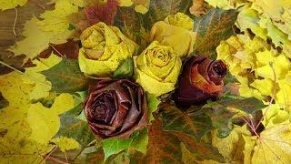как сделать розы из кленовых листьев DIY