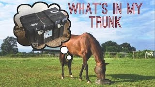 WHAT'S IN MY TRUNK?