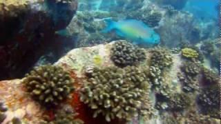 Seychelles - Lanscapes & Diving
