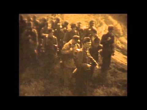 Ww2 international reenactment airsoft game real 8mm cam