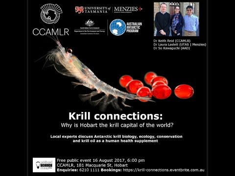 Krill connections: Is Hobart the krill capital of the world?